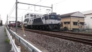 Dscf1003