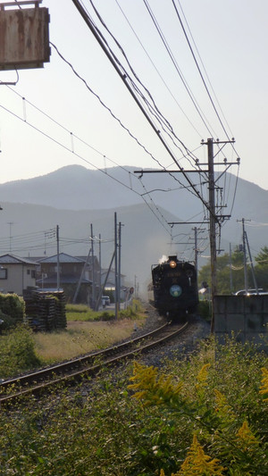 P1040639