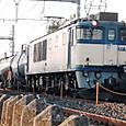 Dscf8316