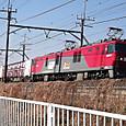 Dscf8482